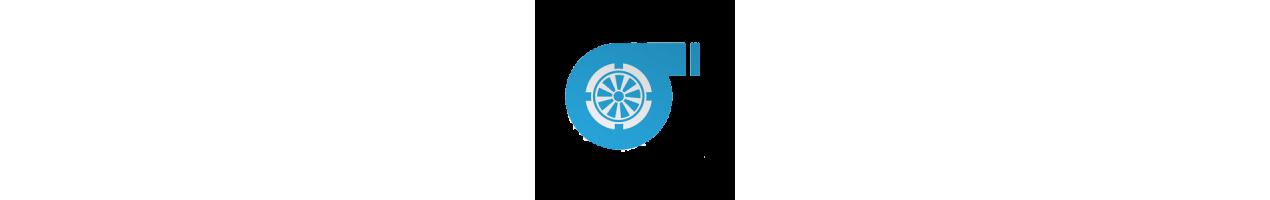 Filtri Olio Motore